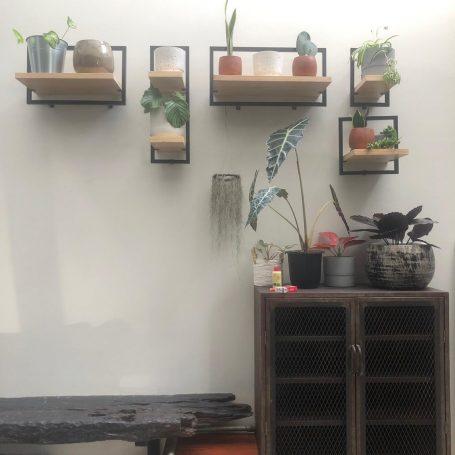 tiktok shelf, gore cabinet