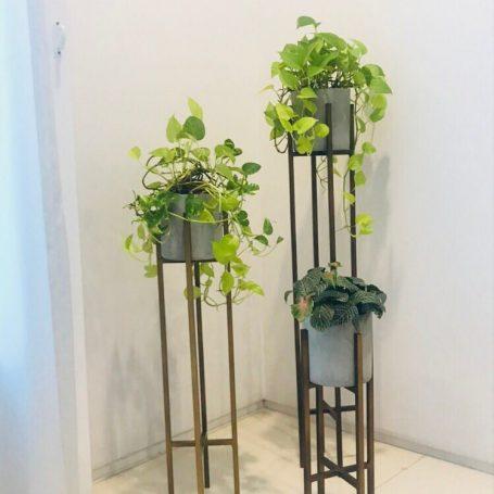 longlegs planter + concrete pot
